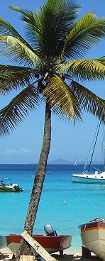 St Vincent & Grenadines - Caraibi